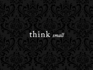 thinksmall-300x225